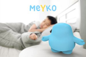 Meyko is your child instinctively takes care of them-selves by taking care of their little companion